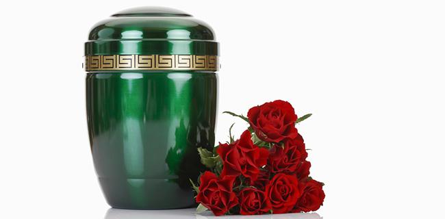Green ash urm next to red roses